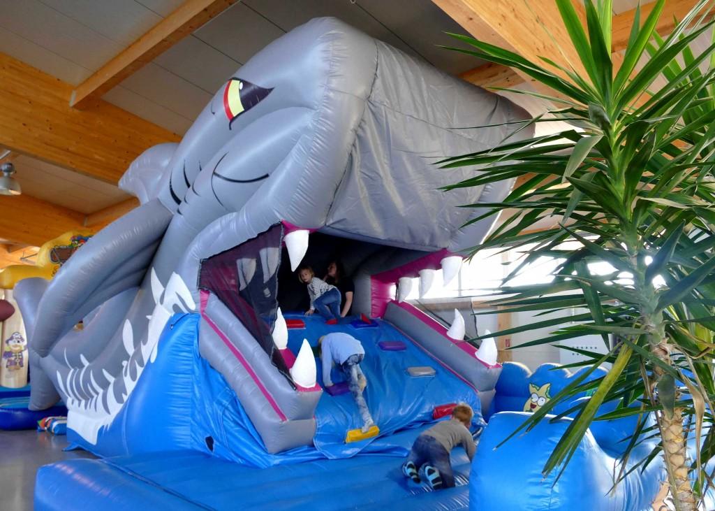 der wilde Hai in SOLA