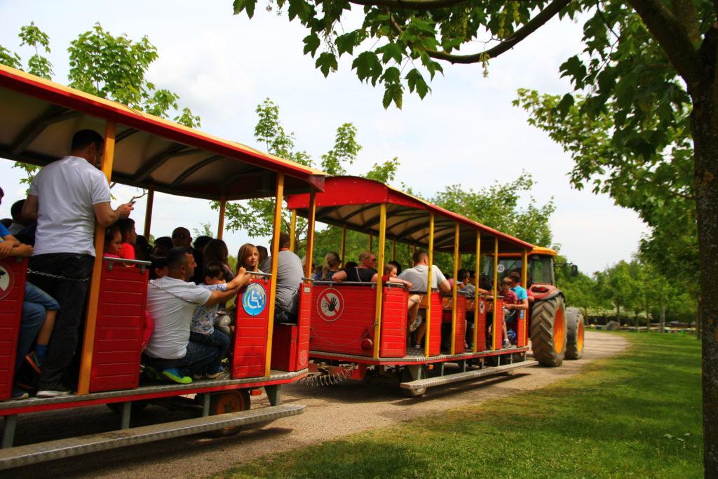 Mit der Parkbahn Anton durch den Sonnenlandpark