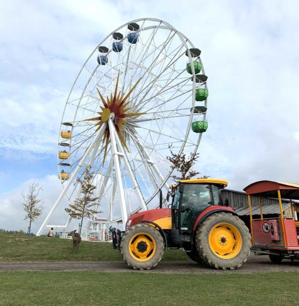 Riesenrad und Parkbahn im Sonnenlandpark